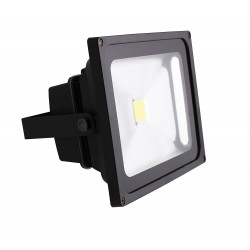 Projecteur Led 10W 6000K blanc froid Pro IP66