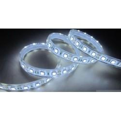 Ruban LED Blanc froid 6000K 5m IP68 Etanche 12V 150 leds SMD 5050 36W