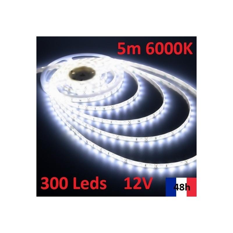 Ruban LED Bleu 5m IP20 12V 150 leds SMD 5050 36W